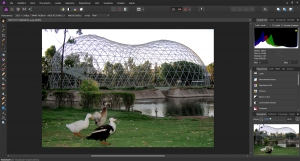 Migliori alternative a Adobe Photoshop