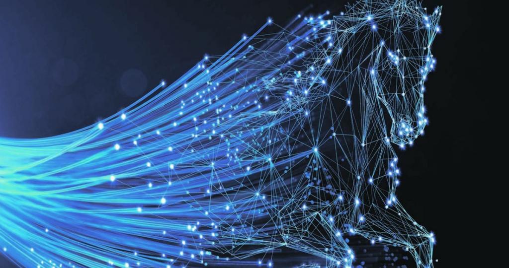 Differenza tra ADSL, Fibra FTTC e FTTH