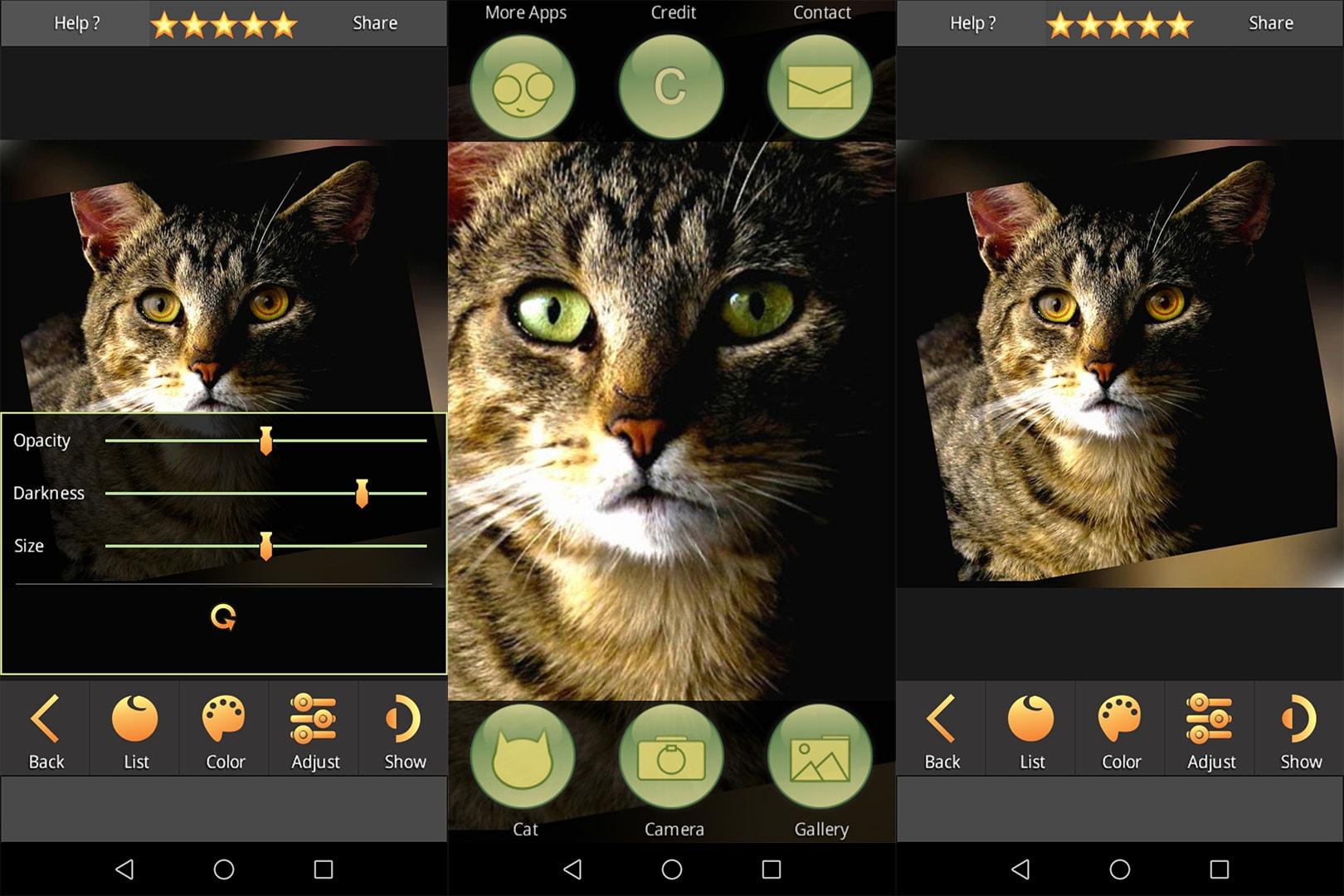 app FoxEyes