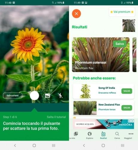 App PlantSnap
