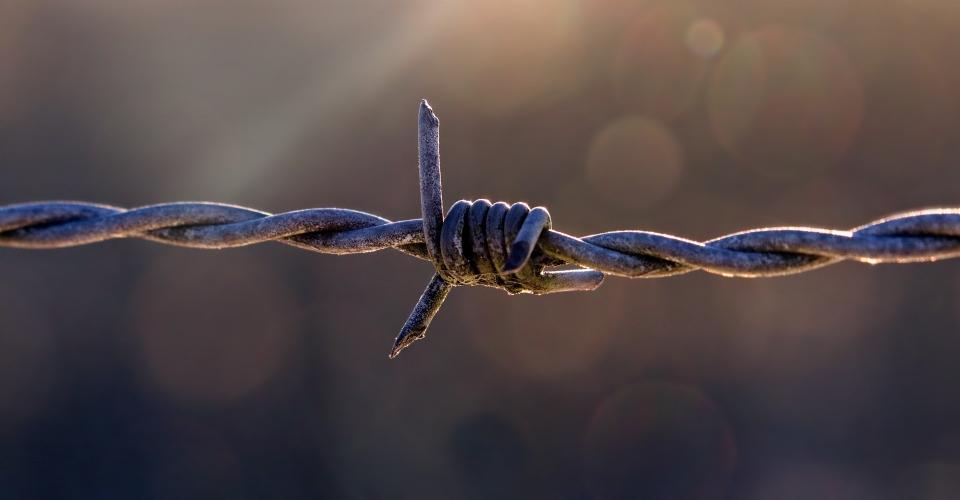 Chi ha inventato il filo spinato?