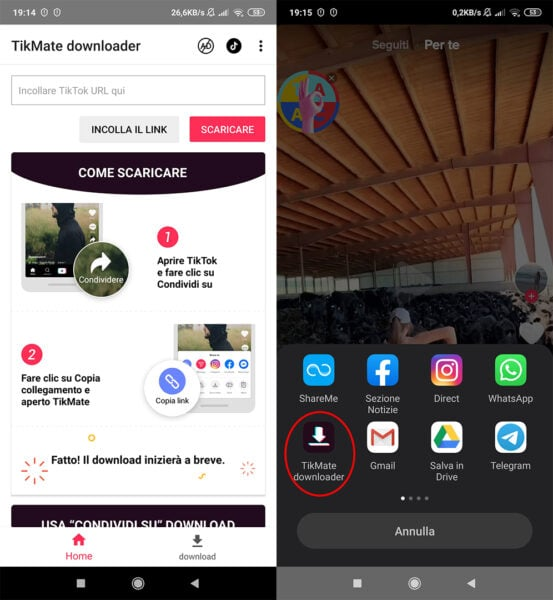 TikTok Downloader per Android