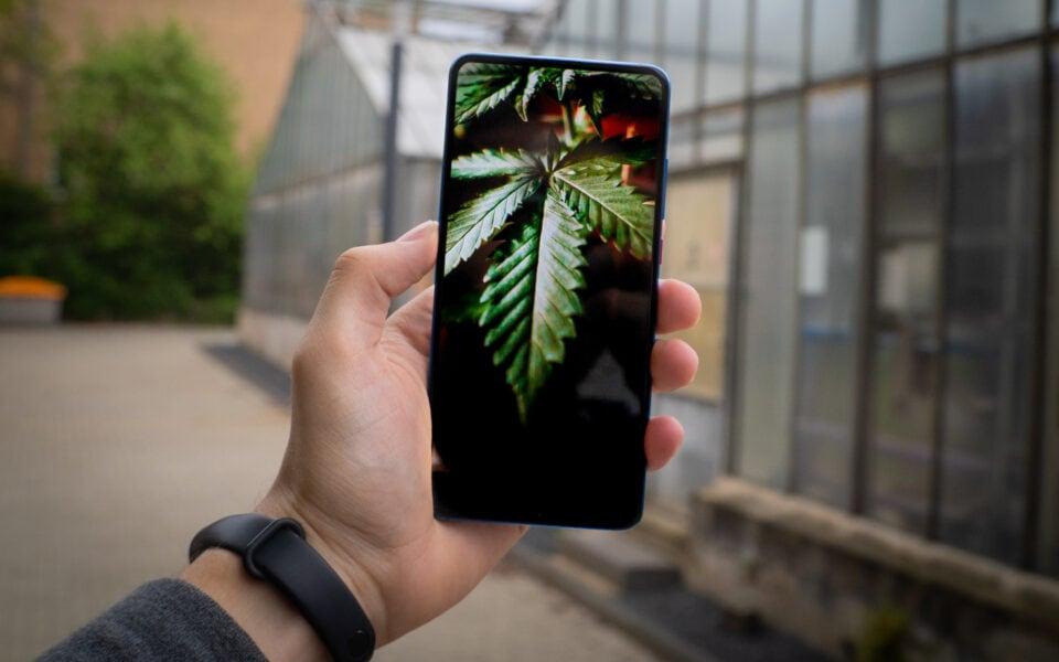 Le migliori app per consumatori di Cannabis